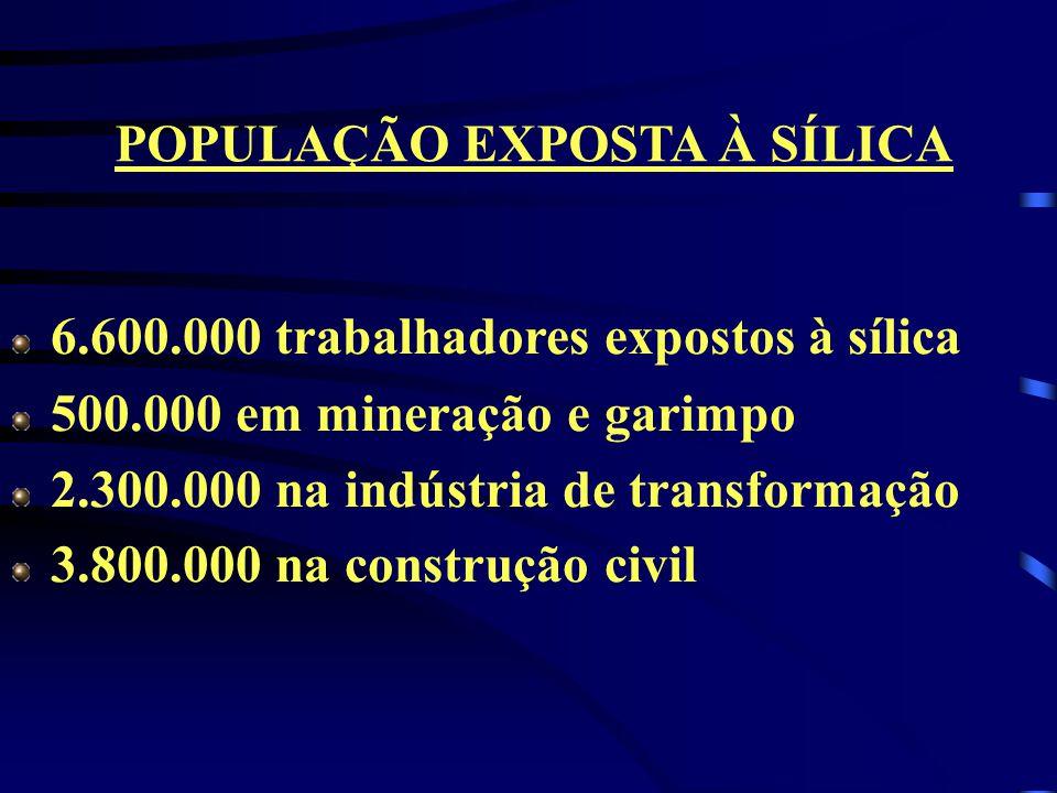 POPULAÇÃO EXPOSTA À SÍLICA
