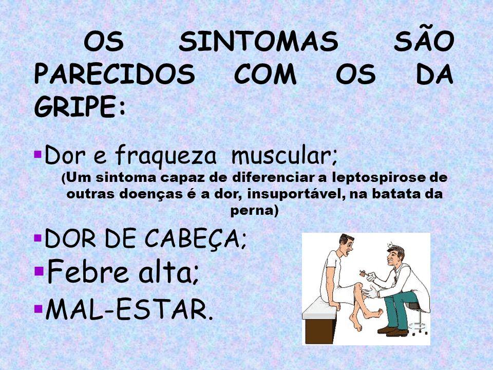 Febre alta; OS SINTOMAS SÃO PARECIDOS COM OS DA GRIPE: MAL-ESTAR.