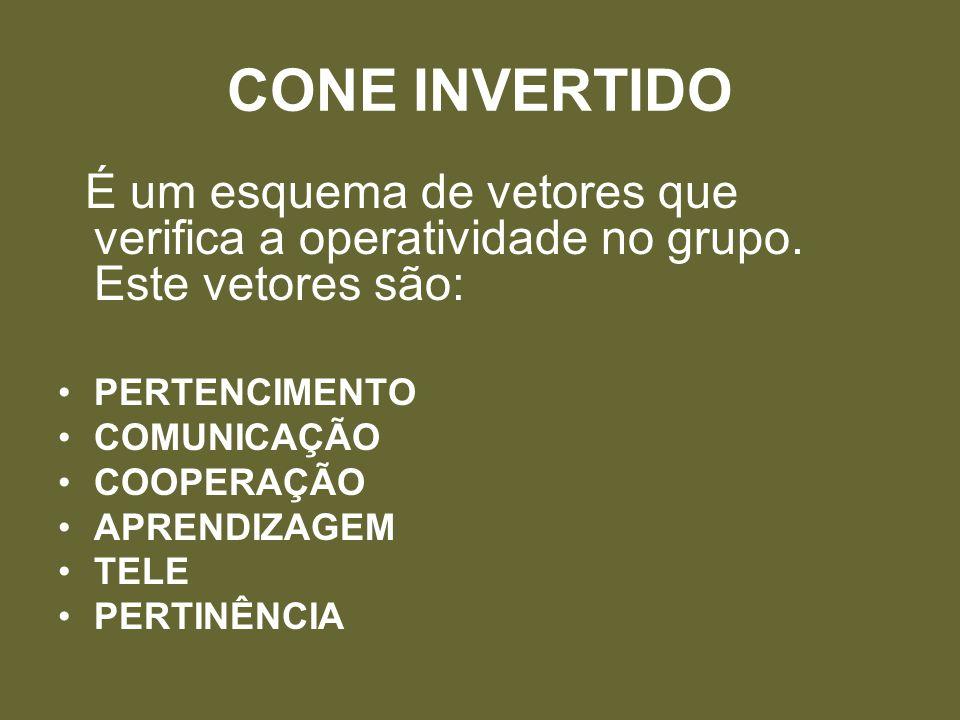 CONE INVERTIDO É um esquema de vetores que verifica a operatividade no grupo. Este vetores são: PERTENCIMENTO.