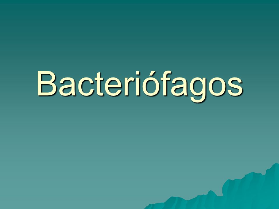 Bacteriófagos