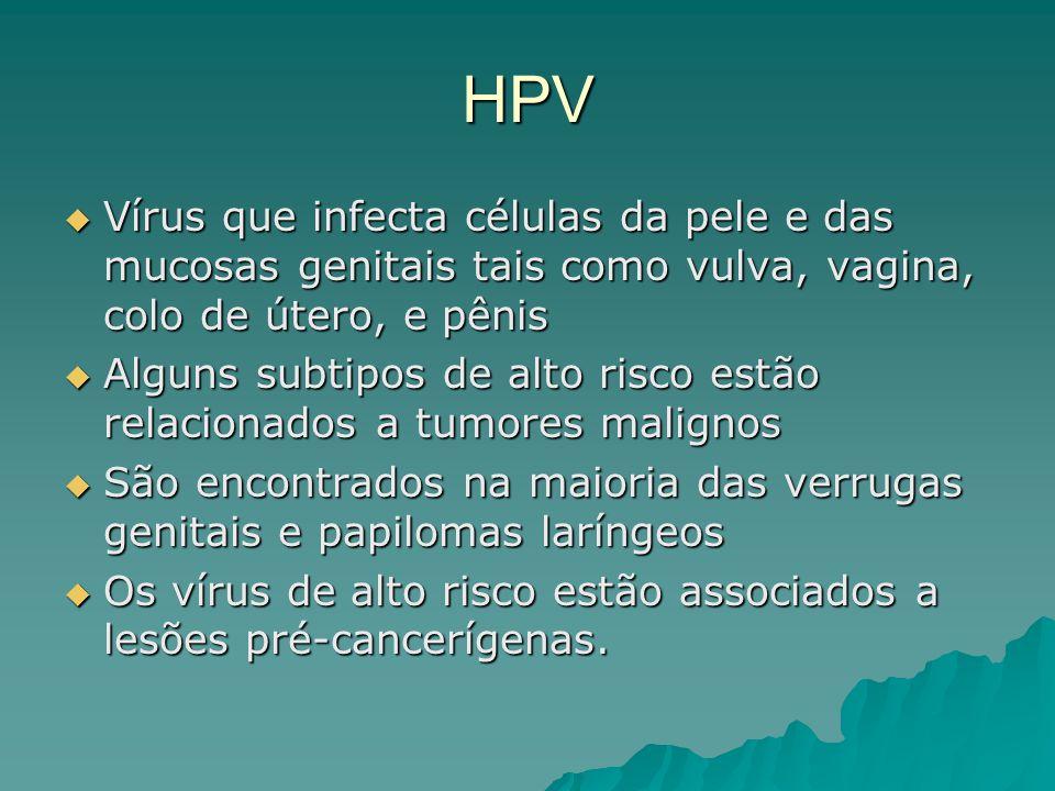 HPV Vírus que infecta células da pele e das mucosas genitais tais como vulva, vagina, colo de útero, e pênis.