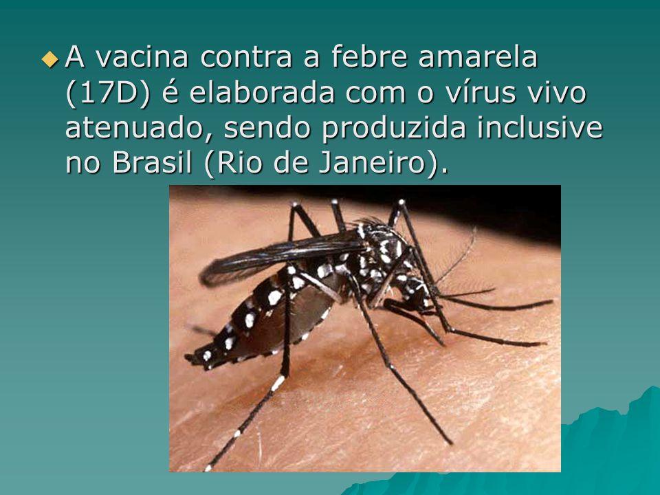 A vacina contra a febre amarela (17D) é elaborada com o vírus vivo atenuado, sendo produzida inclusive no Brasil (Rio de Janeiro).