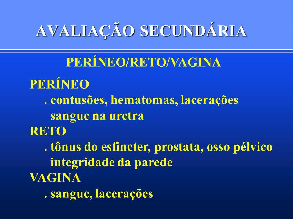 AVALIAÇÃO SECUNDÁRIA PERÍNEO/RETO/VAGINA PERÍNEO