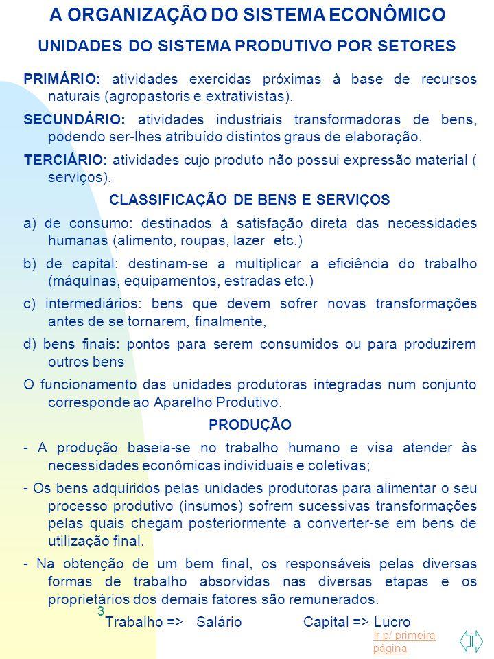 A ORGANIZAÇÃO DO SISTEMA ECONÔMICO