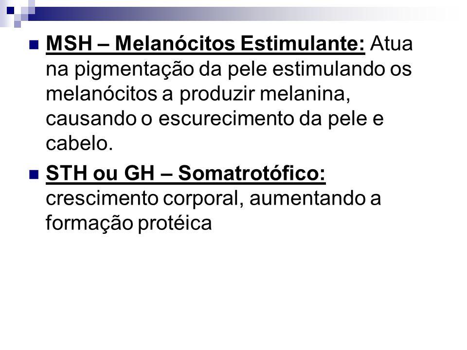 MSH – Melanócitos Estimulante: Atua na pigmentação da pele estimulando os melanócitos a produzir melanina, causando o escurecimento da pele e cabelo.