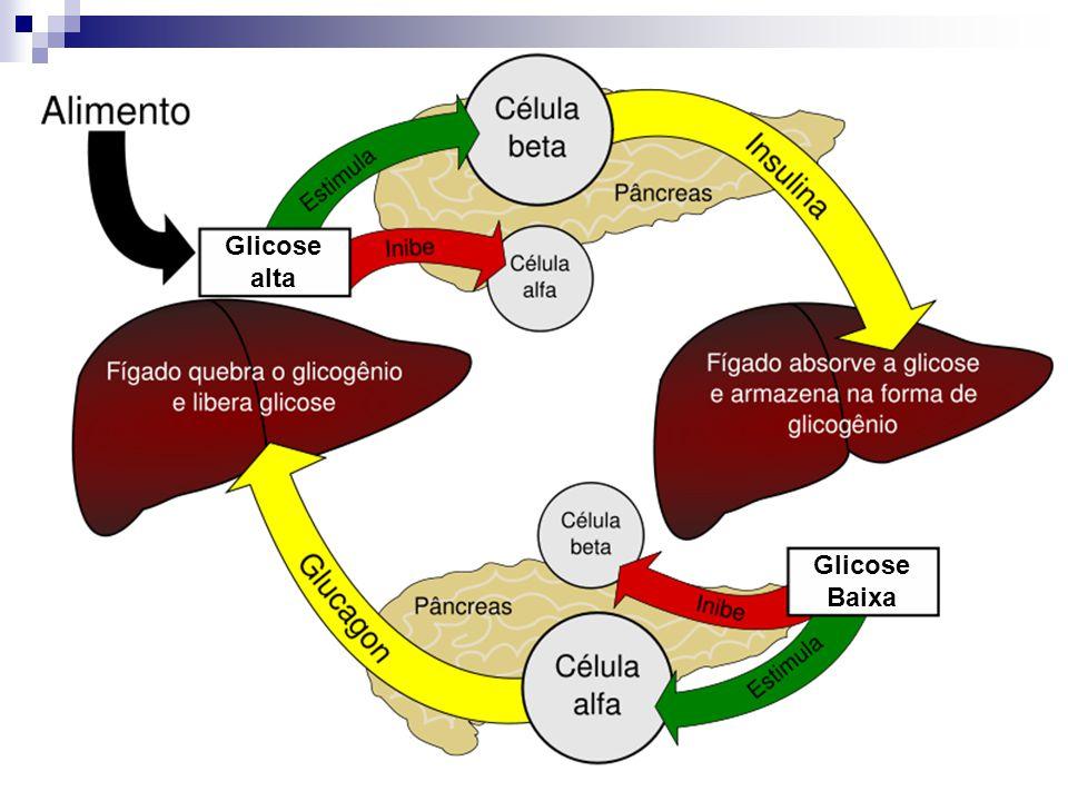 Glicose alta Glicose Baixa