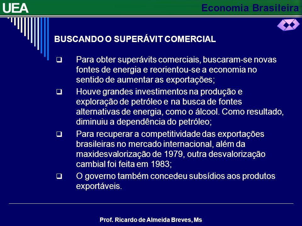 BUSCANDO O SUPERÁVIT COMERCIAL