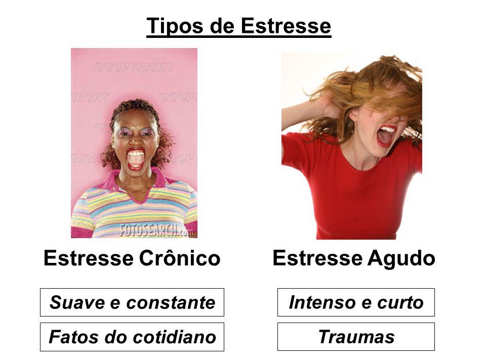 Tipos de Estresse Estresse Crônico Estresse Agudo