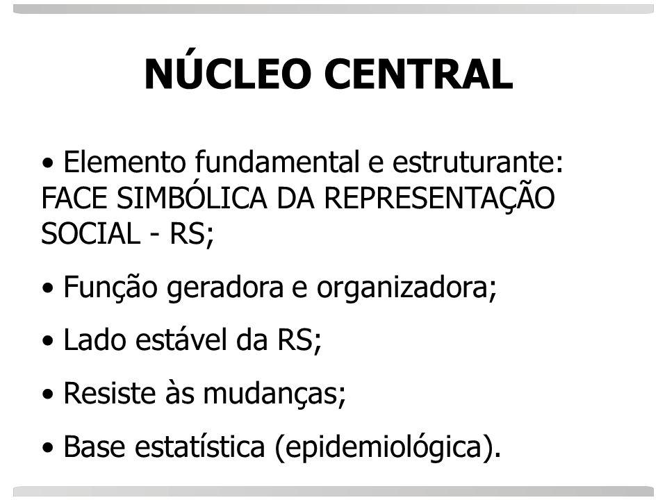 NÚCLEO CENTRAL Elemento fundamental e estruturante: FACE SIMBÓLICA DA REPRESENTAÇÃO SOCIAL - RS; Função geradora e organizadora;
