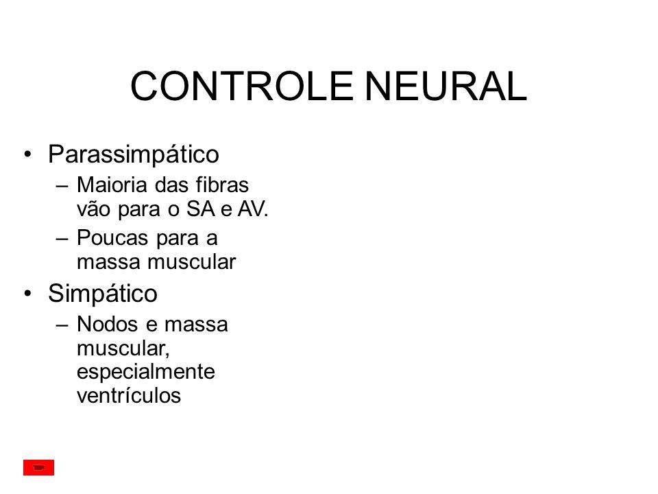 CONTROLE NEURAL Parassimpático Simpático