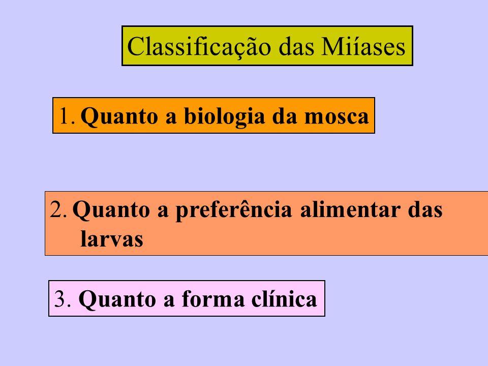 Classificação das Miíases
