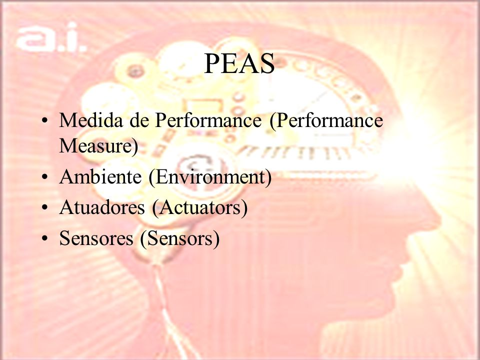 PEAS Medida de Performance (Performance Measure)