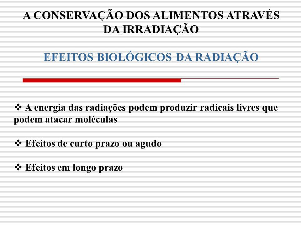 A CONSERVAÇÃO DOS ALIMENTOS ATRAVÉS EFEITOS BIOLÓGICOS DA RADIAÇÃO