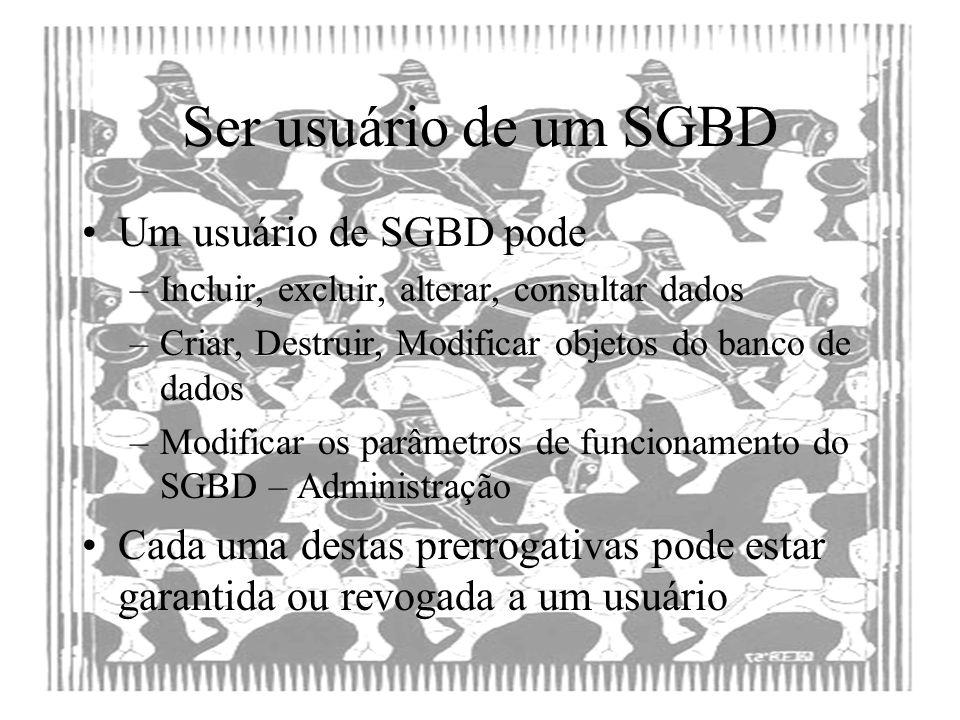 Ser usuário de um SGBD Um usuário de SGBD pode