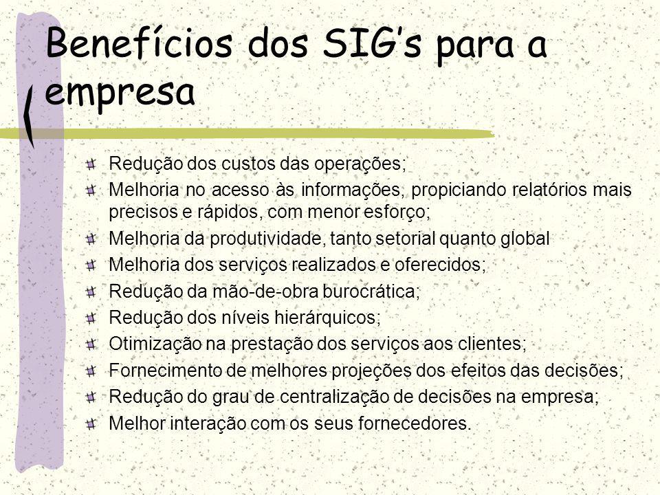 Benefícios dos SIG's para a empresa