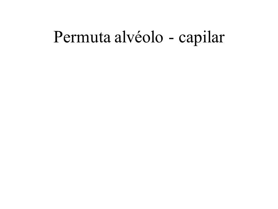 Permuta alvéolo - capilar