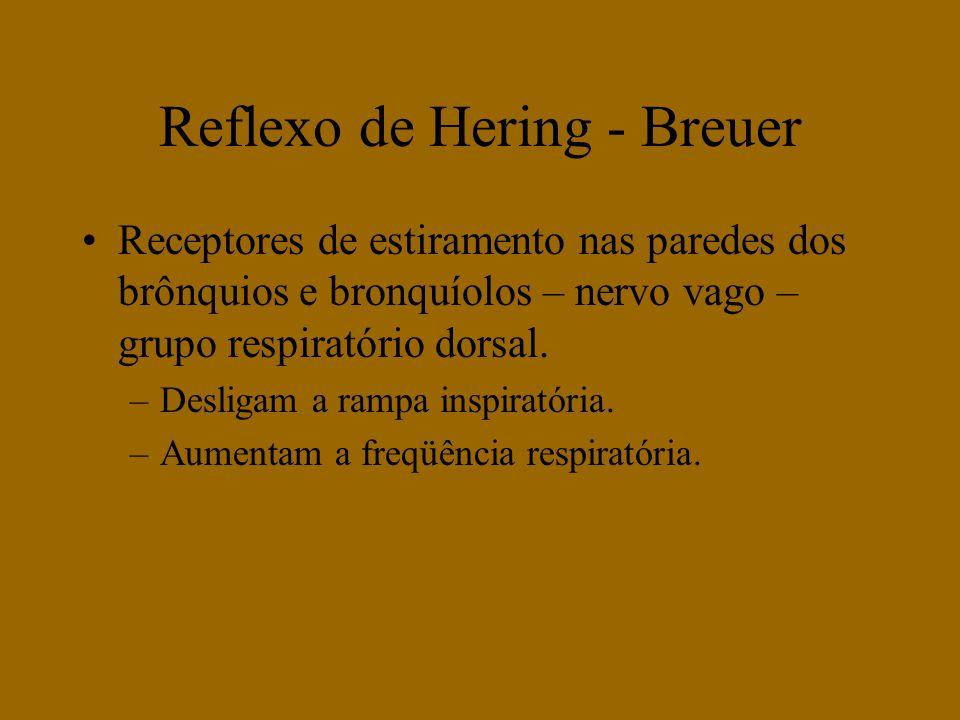 Reflexo de Hering - Breuer