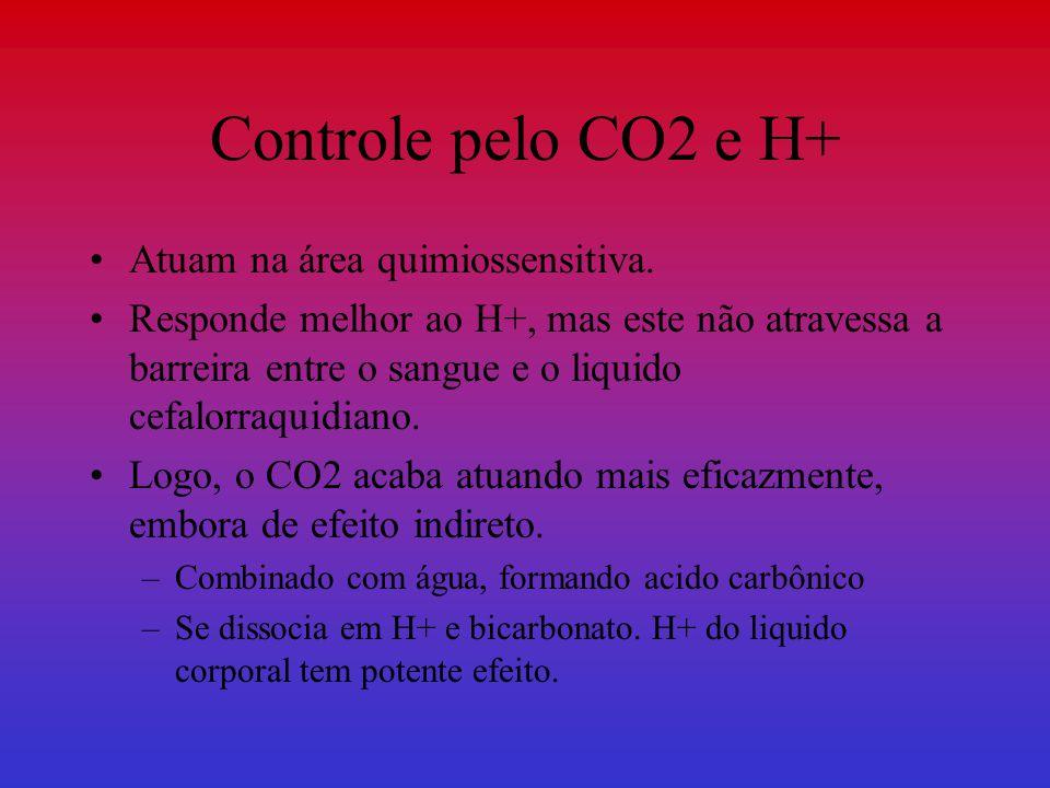 Controle pelo CO2 e H+ Atuam na área quimiossensitiva.