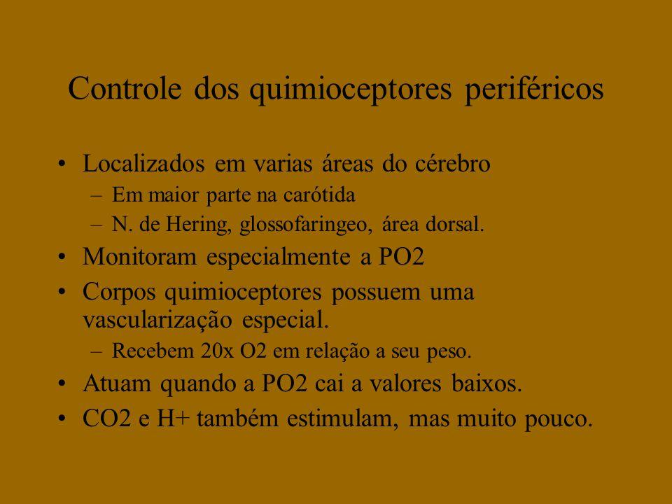 Controle dos quimioceptores periféricos