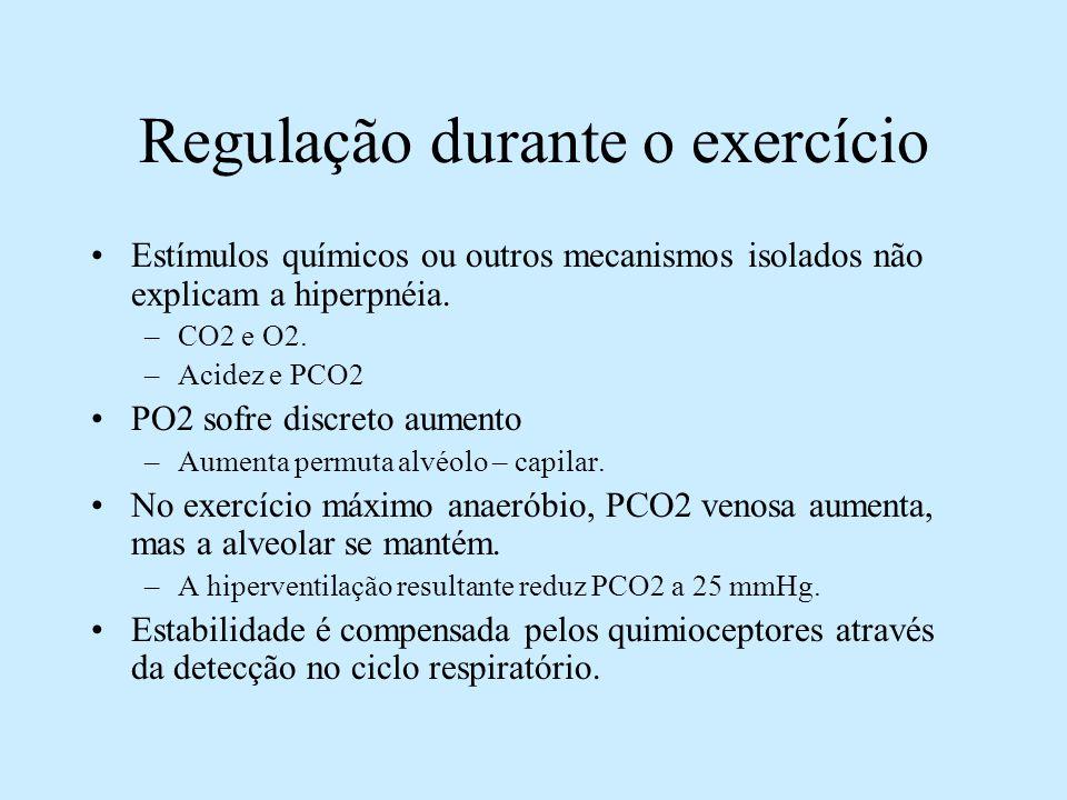 Regulação durante o exercício