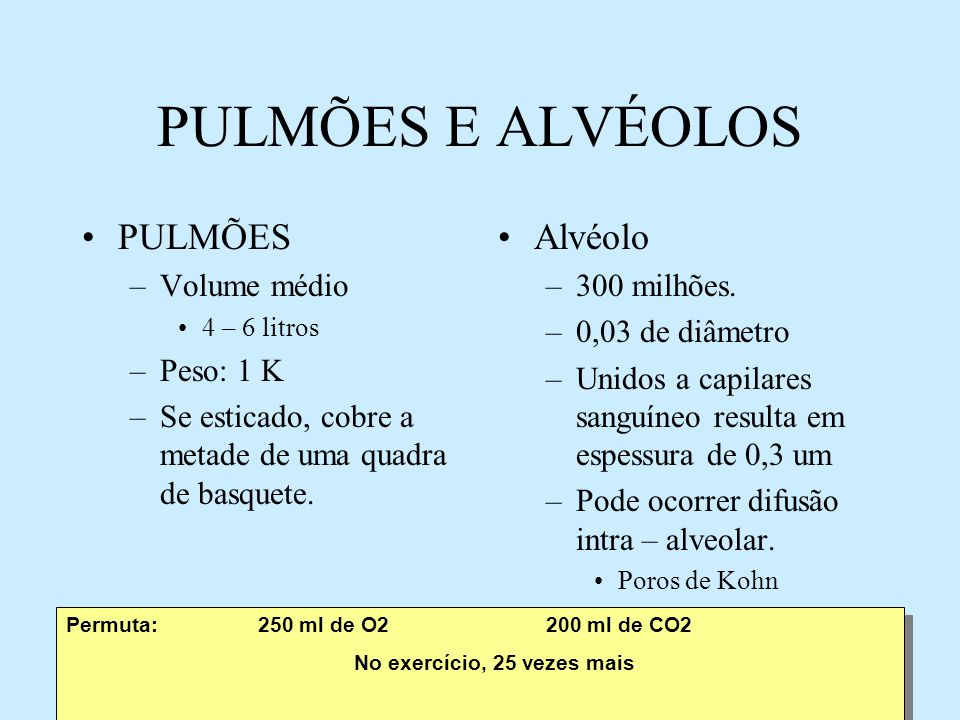 PULMÕES E ALVÉOLOS PULMÕES Alvéolo Volume médio Peso: 1 K
