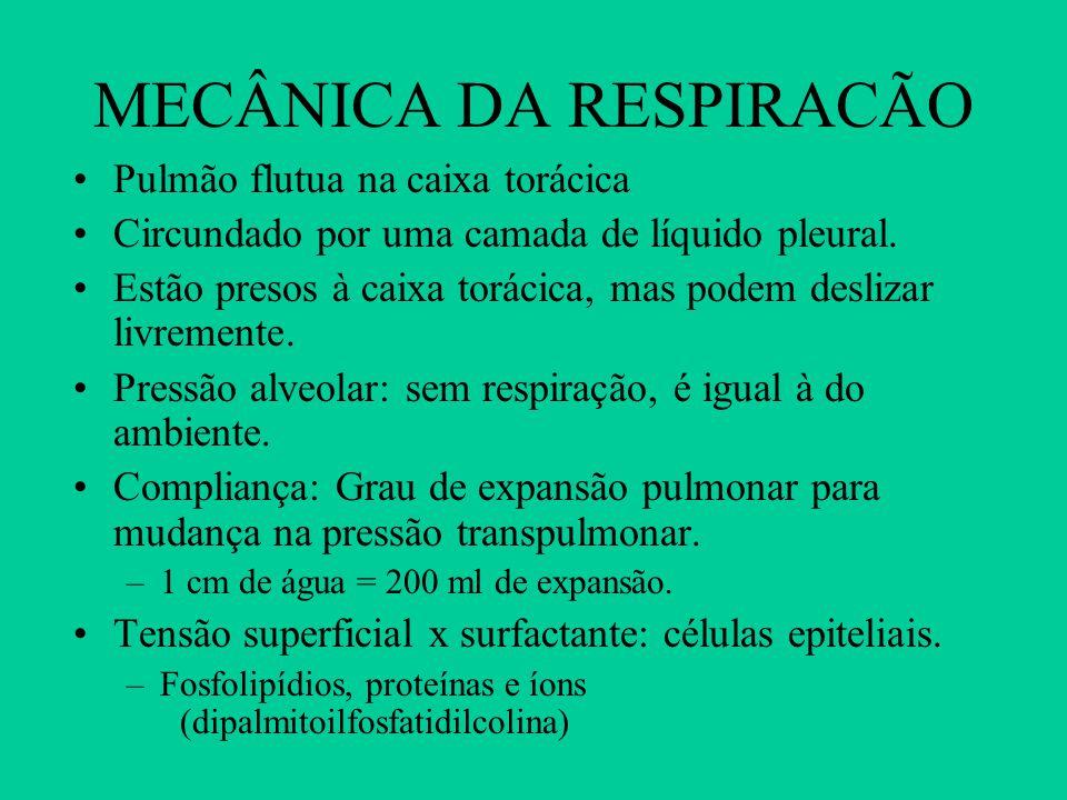MECÂNICA DA RESPIRACÃO