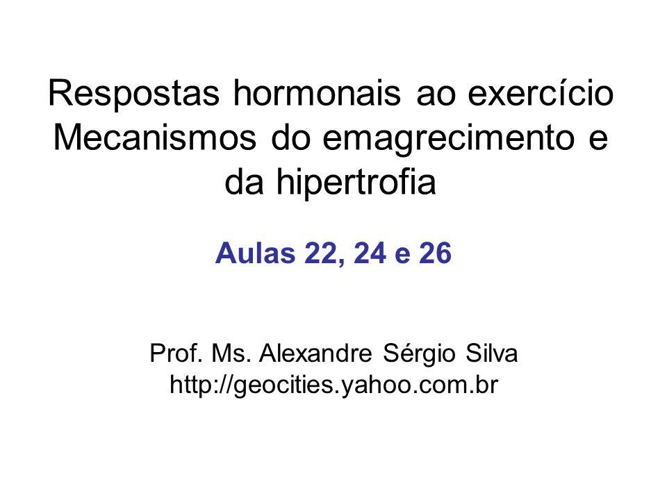 Prof. Ms. Alexandre Sérgio Silva