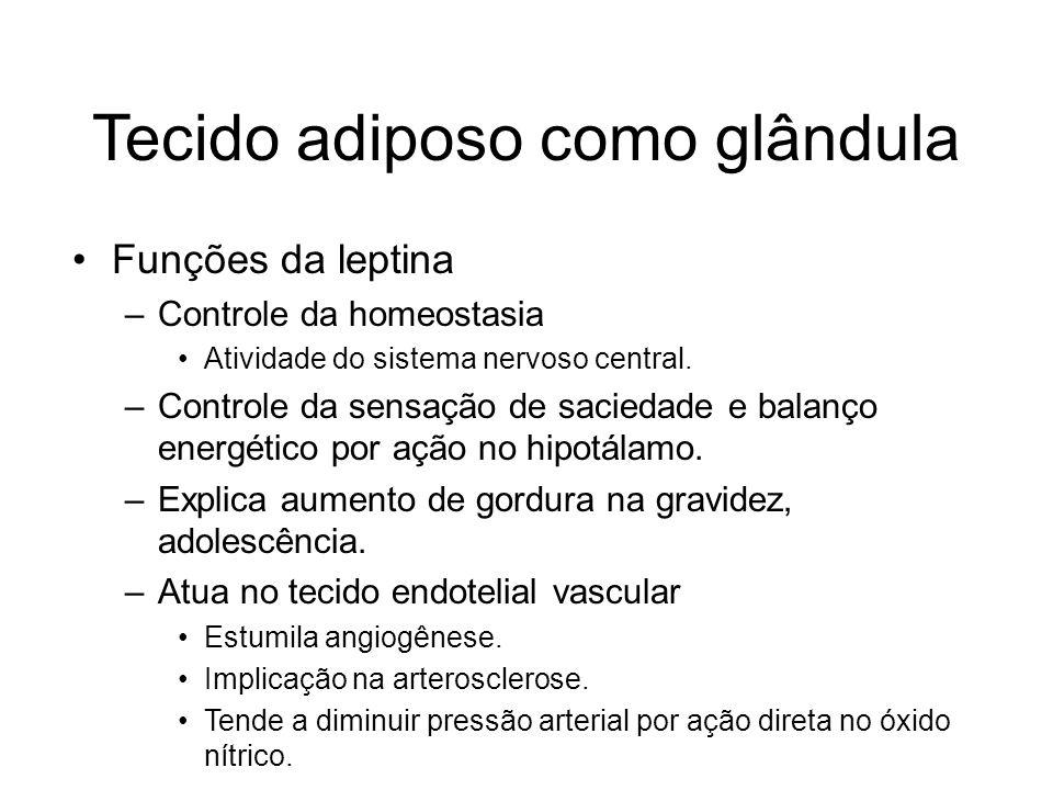 Tecido adiposo como glândula