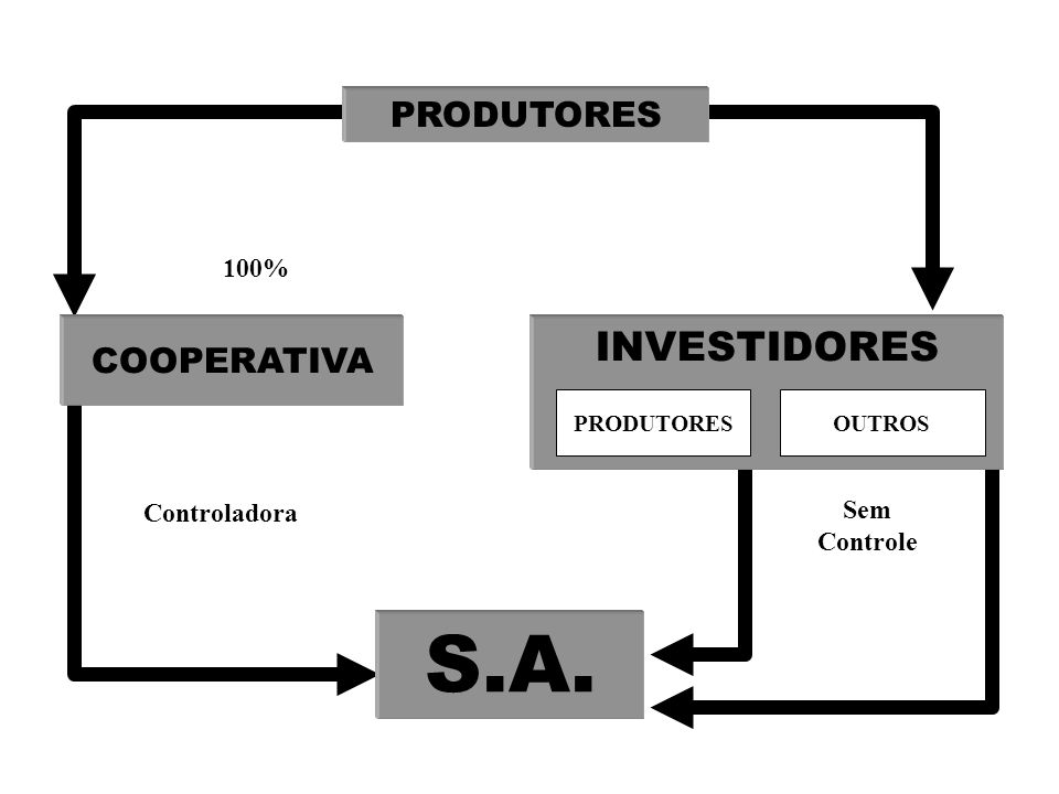 S.A. INVESTIDORES PRODUTORES COOPERATIVA 100% Controladora Sem