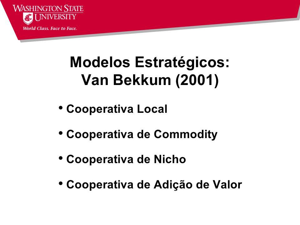 Modelos Estratégicos: Van Bekkum (2001)