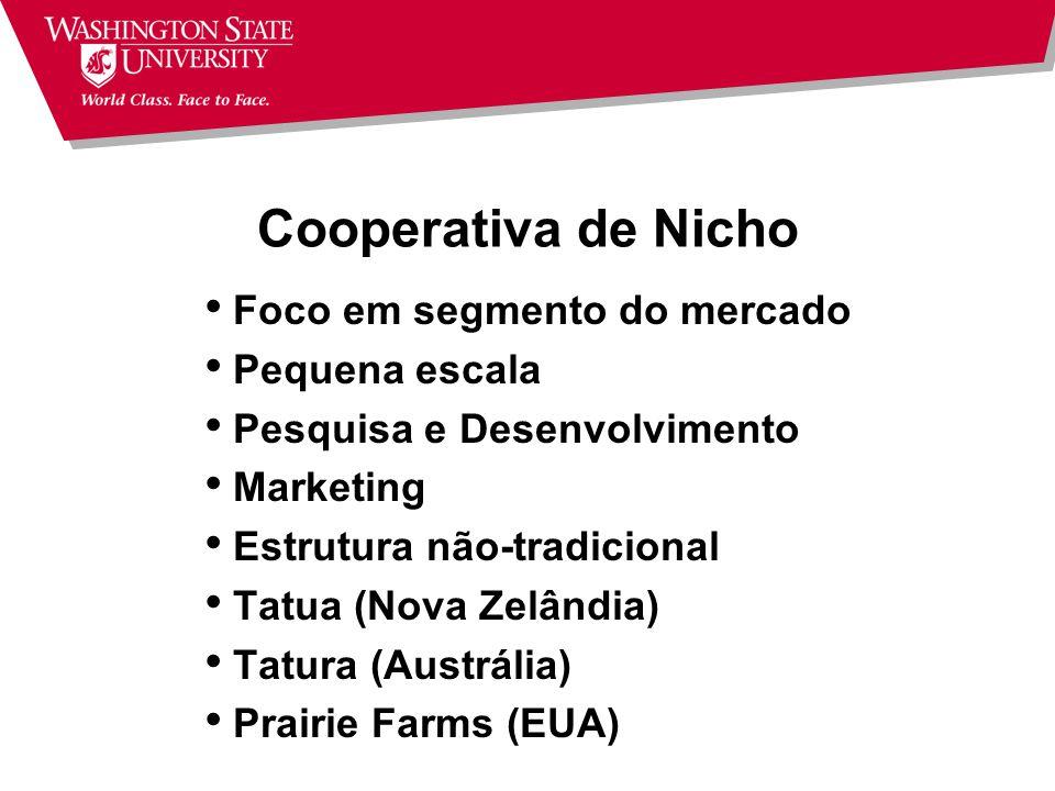 Cooperativa de Nicho Foco em segmento do mercado Pequena escala