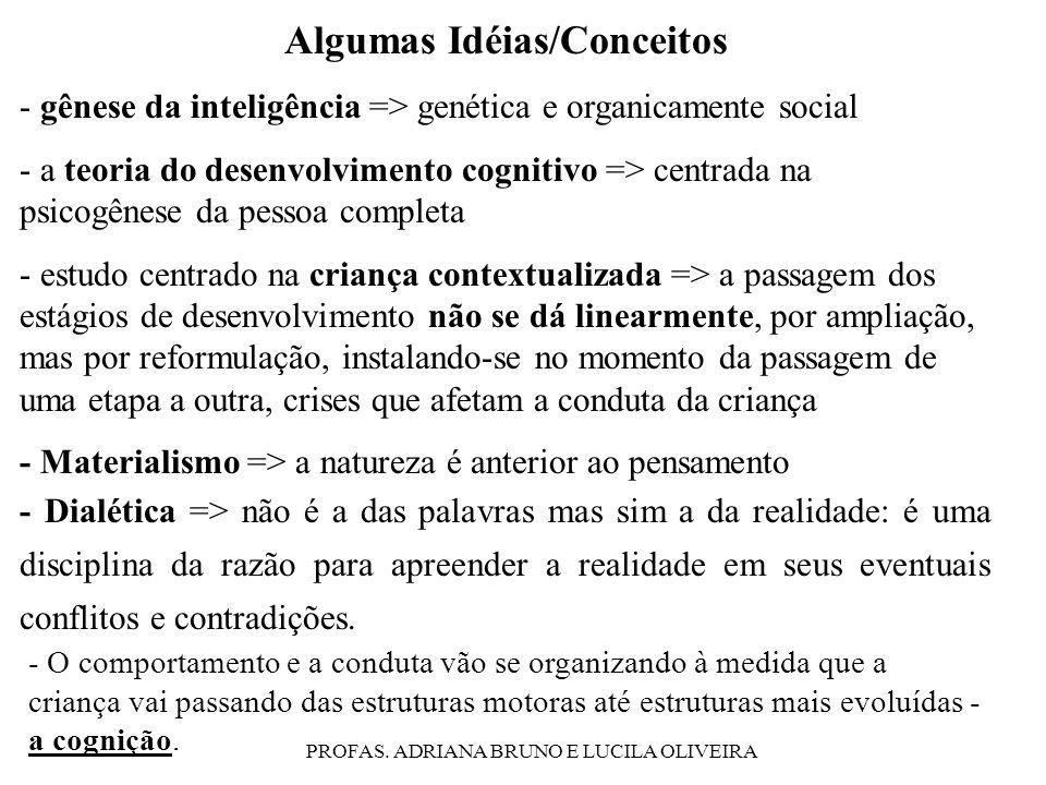 Algumas Idéias/Conceitos