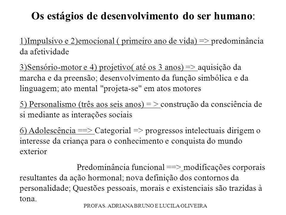 Os estágios de desenvolvimento do ser humano: