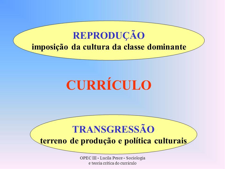 CURRÍCULO REPRODUÇÃO TRANSGRESSÃO