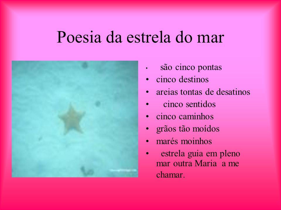 Poesia da estrela do mar
