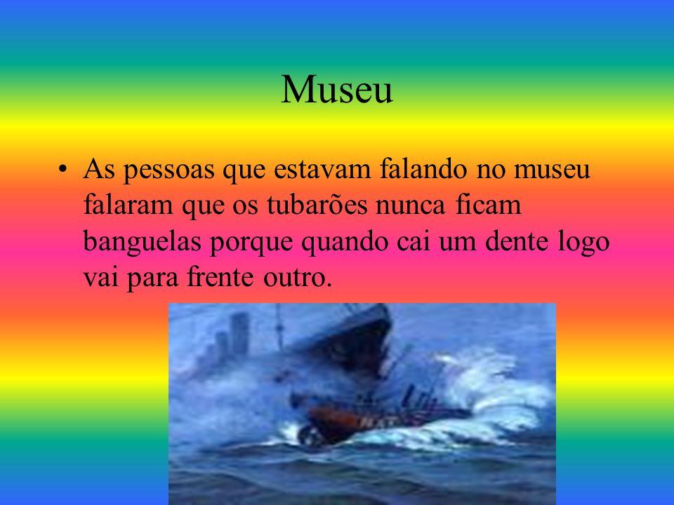 Museu As pessoas que estavam falando no museu falaram que os tubarões nunca ficam banguelas porque quando cai um dente logo vai para frente outro.