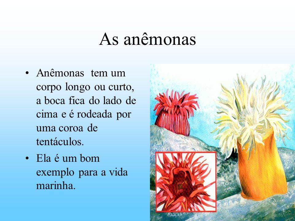 As anêmonas Anêmonas tem um corpo longo ou curto, a boca fica do lado de cima e é rodeada por uma coroa de tentáculos.