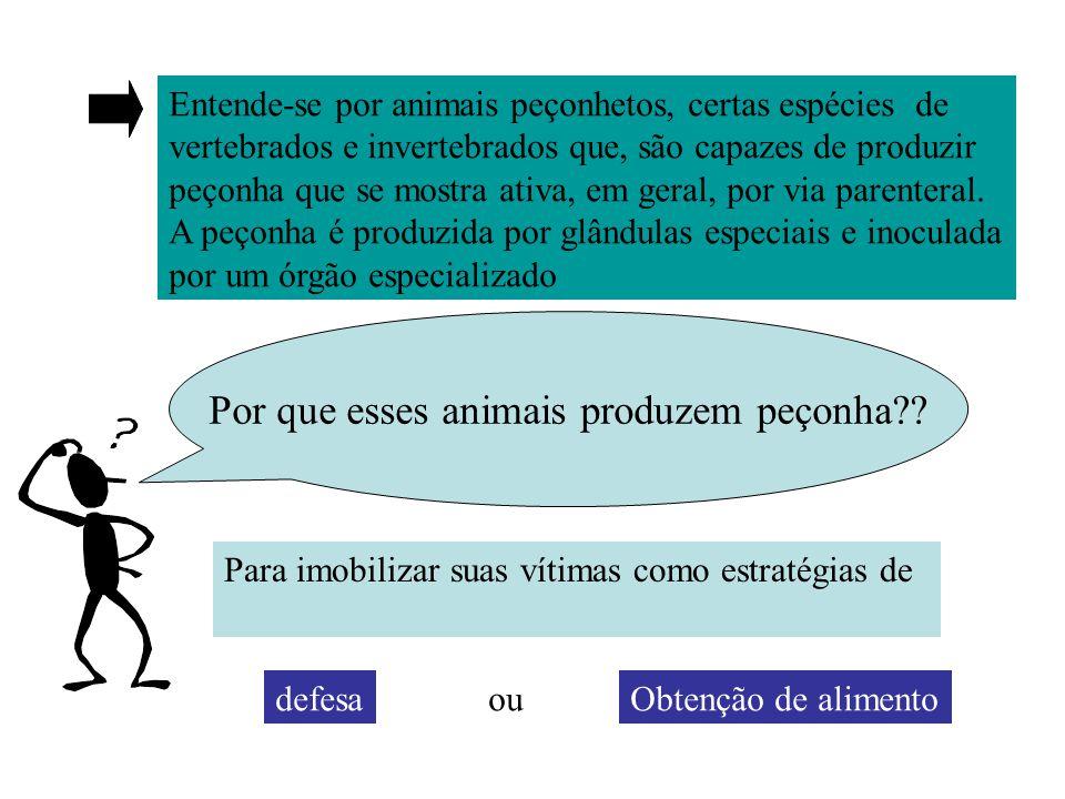 Por que esses animais produzem peçonha