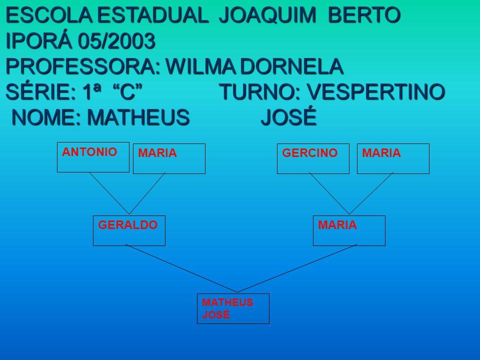 ESCOLA ESTADUAL JOAQUIM BERTO IPORÁ 05/2003 PROFESSORA: WILMA DORNELA