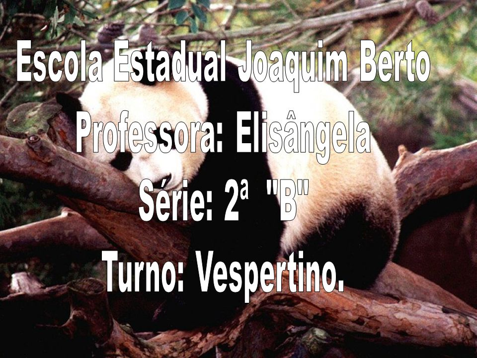 Escola Estadual Joaquim Berto Professora: Elisângela