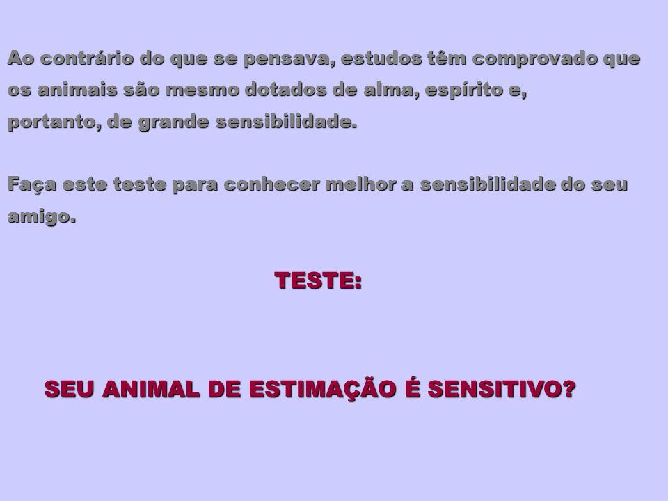 SEU ANIMAL DE ESTIMAÇÃO É SENSITIVO