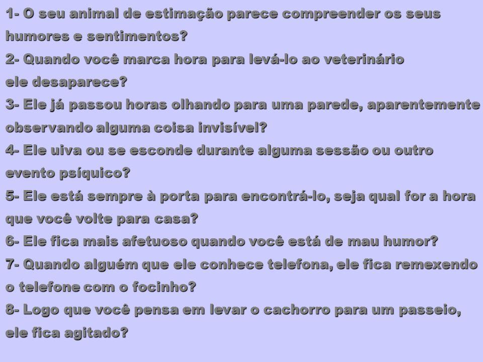 1- O seu animal de estimação parece compreender os seus