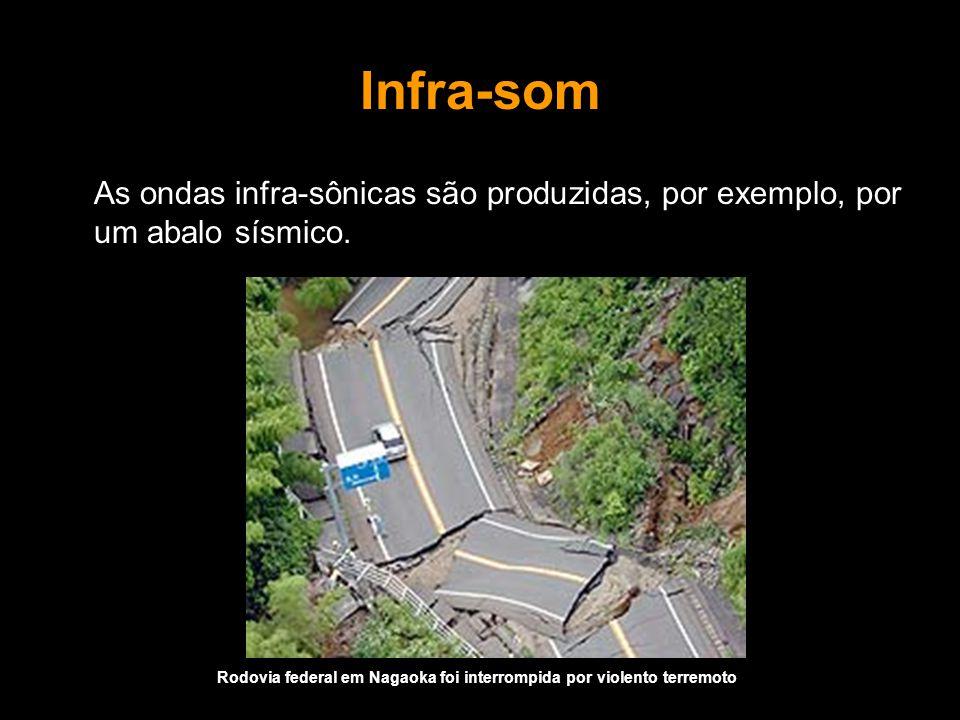 Infra-som As ondas infra-sônicas são produzidas, por exemplo, por um abalo sísmico.