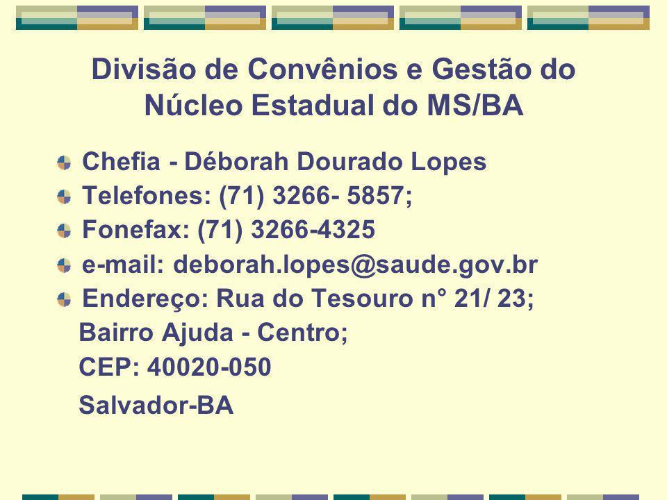 Divisão de Convênios e Gestão do Núcleo Estadual do MS/BA