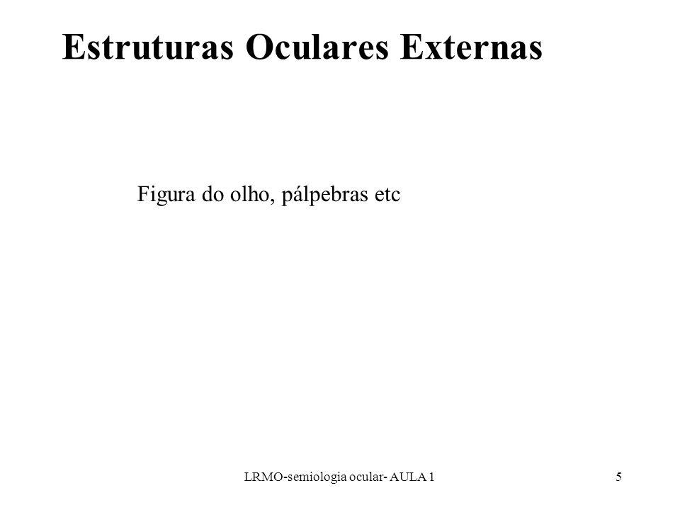Estruturas Oculares Externas