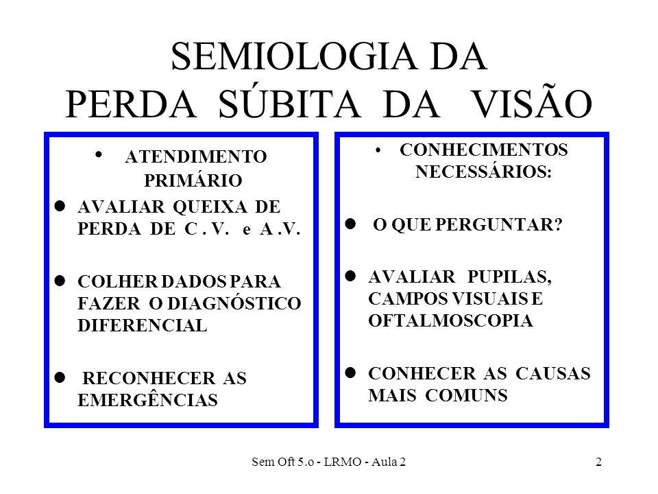 SEMIOLOGIA DA PERDA SÚBITA DA VISÃO
