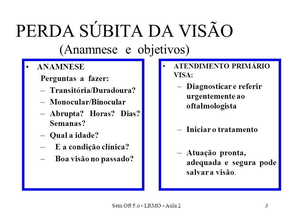 PERDA SÚBITA DA VISÃO (Anamnese e objetivos)