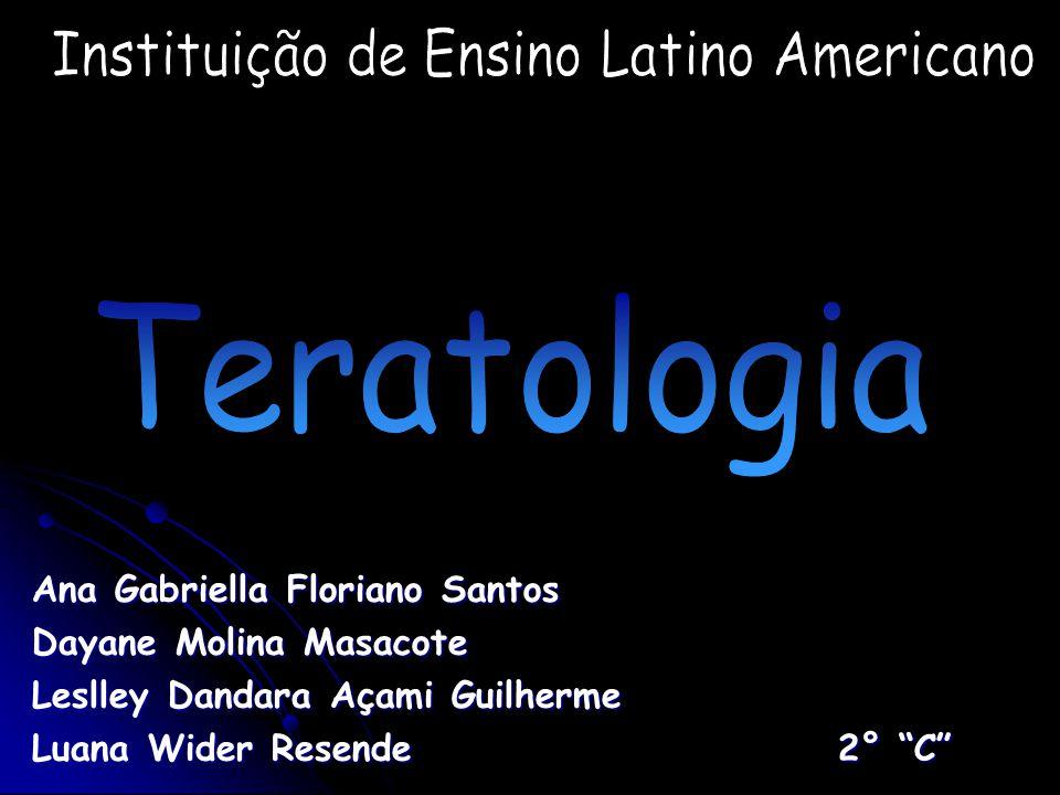 Instituição de Ensino Latino Americano