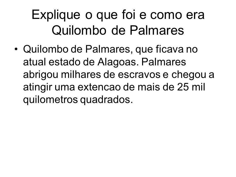 Explique o que foi e como era Quilombo de Palmares