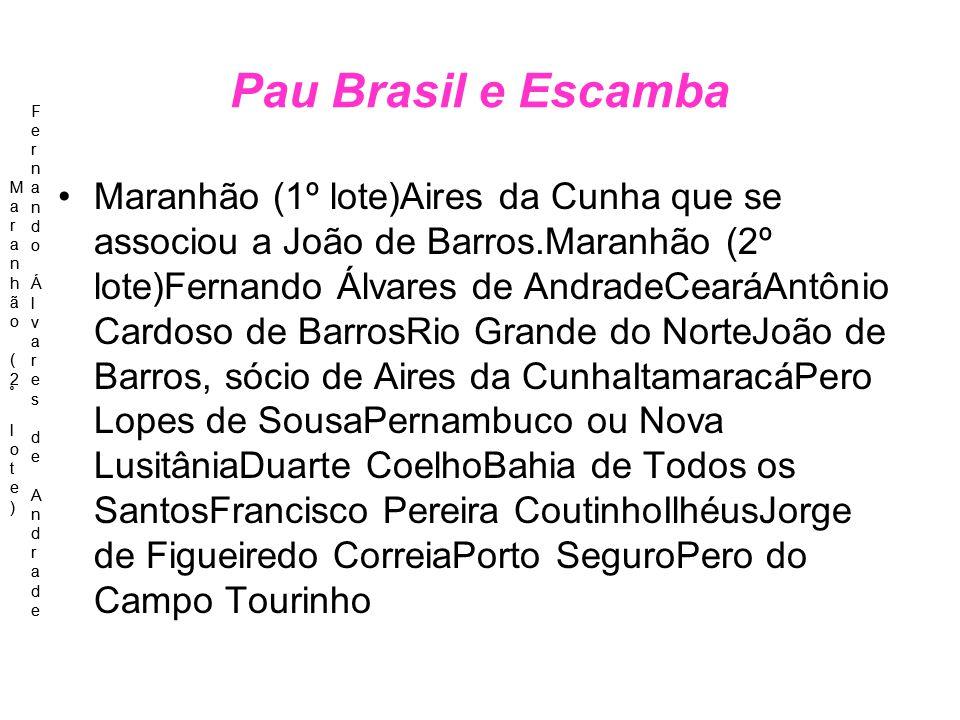 Pau Brasil e Escamba Maranhão (2º lote) Fernando Álvares de Andrade. Maranhão (2º lote) Fernando Álvares de Andrade.